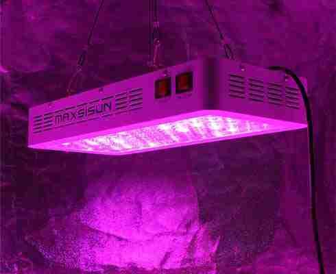 MAXSISUN LED Light Reviews