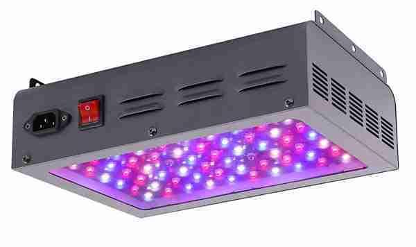 MAXSISUN 600W Light Review