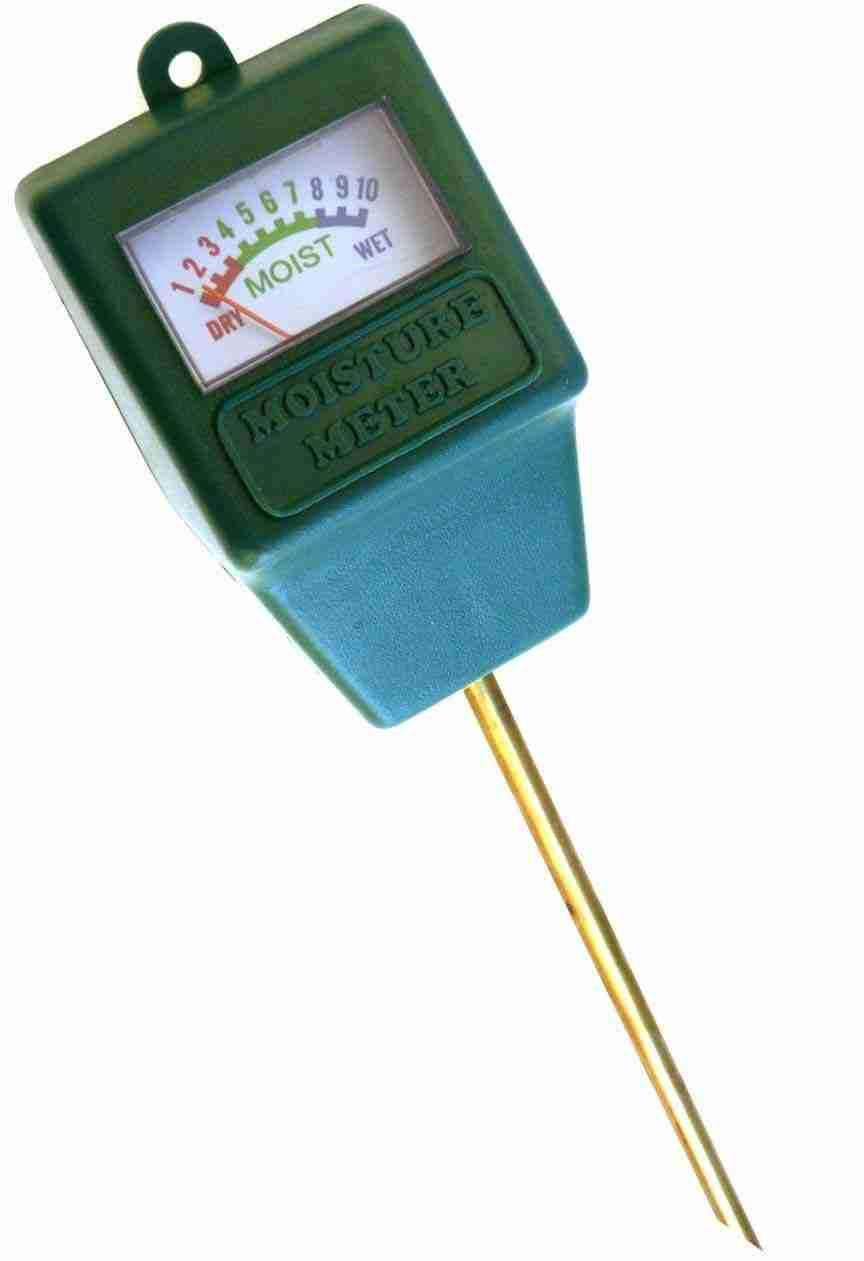 Moisture Sensor Meter or Self-Watering Plant