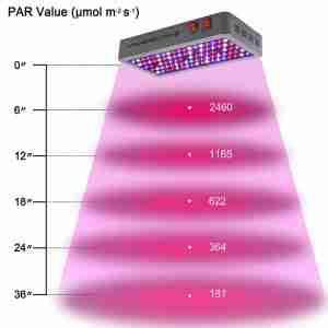 450W PAR value