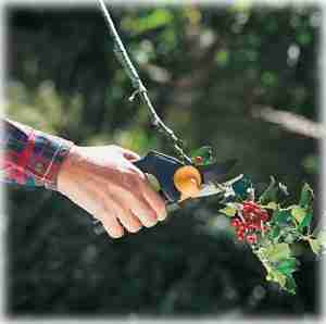 Fiskars PowerGear Pruner Review