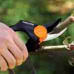 Fiskars Pruners Reviews