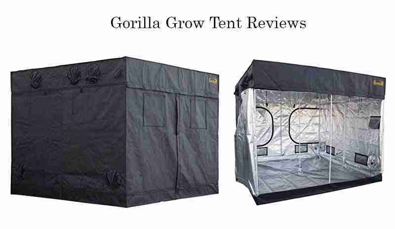 Gorilla Grow Tent Reviews