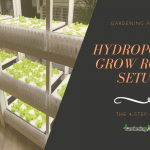 Hydroponic Grow Room Setup