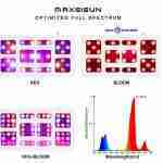 MAXSISUN Grow Lights Review