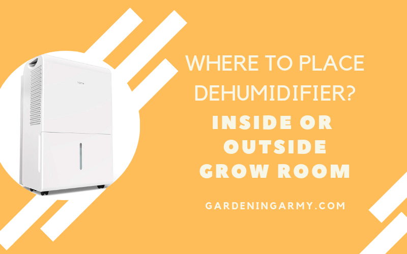 dehumidifier placement
