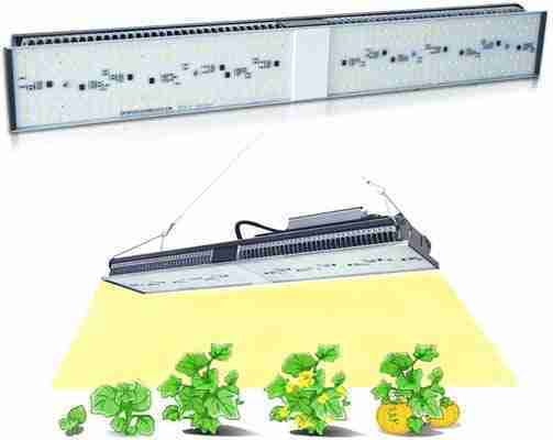 MARS HYDRO SP 150 Led Grow Lights Review
