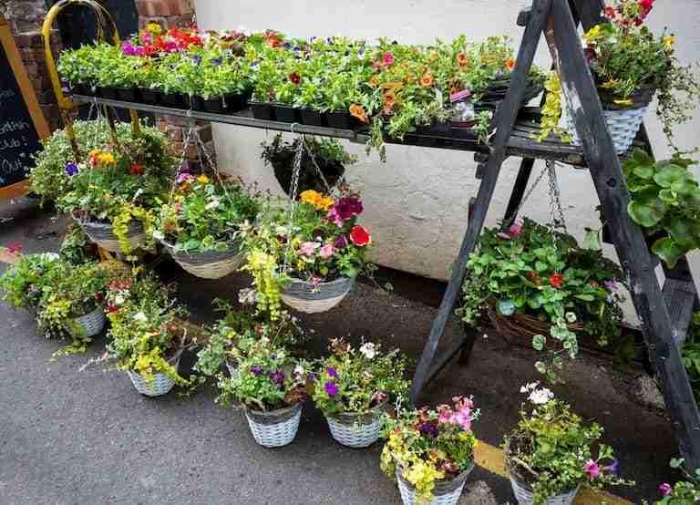 plan garden beds