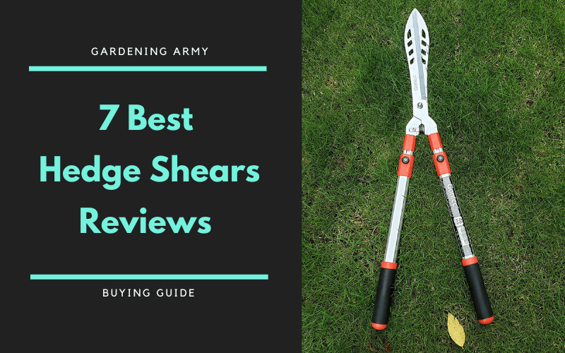 best hedge shears reviews