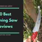 Best Pruning Saw Reviews