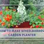 Make Wheelbarrow Garden Planter