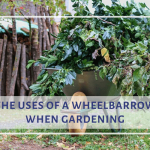 uses of a wheelbarrow in gardening