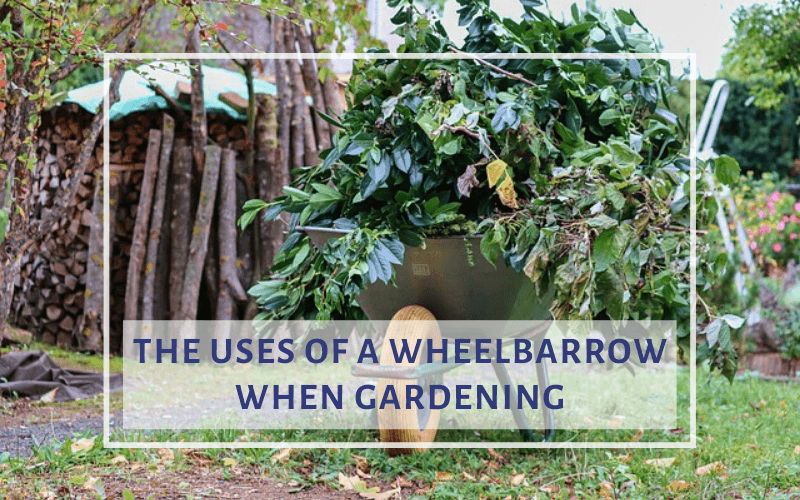 uses of a wheelbarrow in gardening