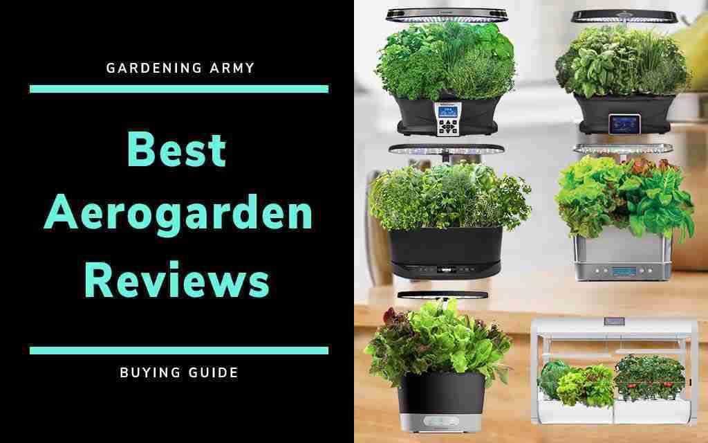 aerogarden review