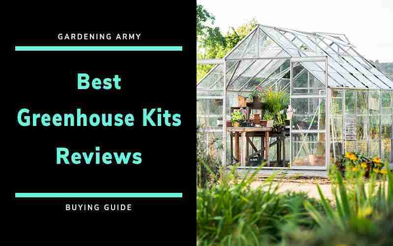 Best Small Greenhouse Kits