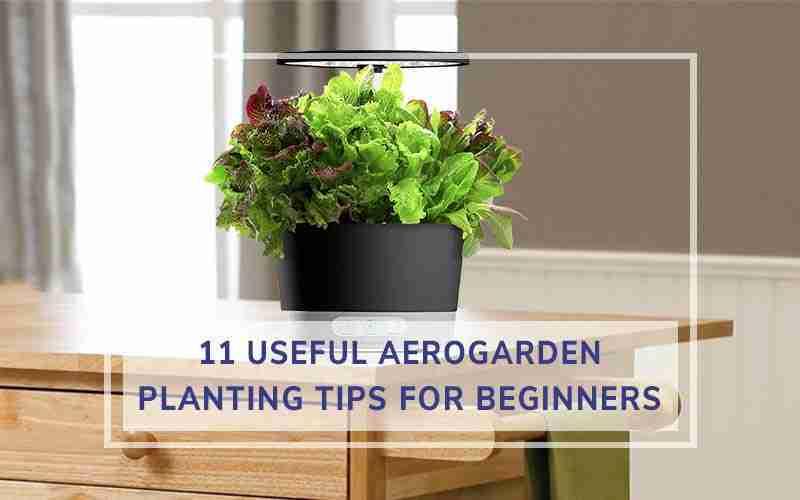 AeroGarden Planting Tips