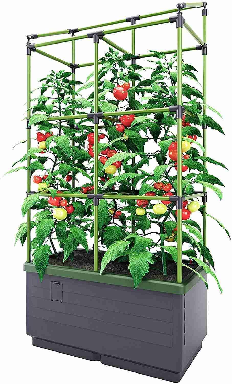 bio green city jungle hydroponic gardening system