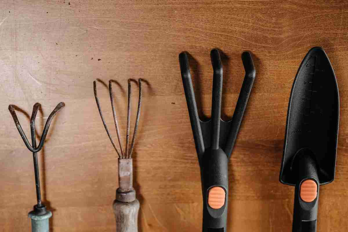 different gardening tools isolated on wooden table