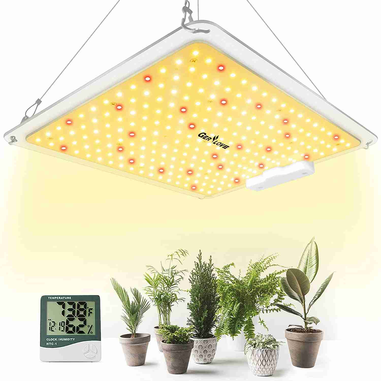 gerylove sp 1000w led grow light isolated on white background